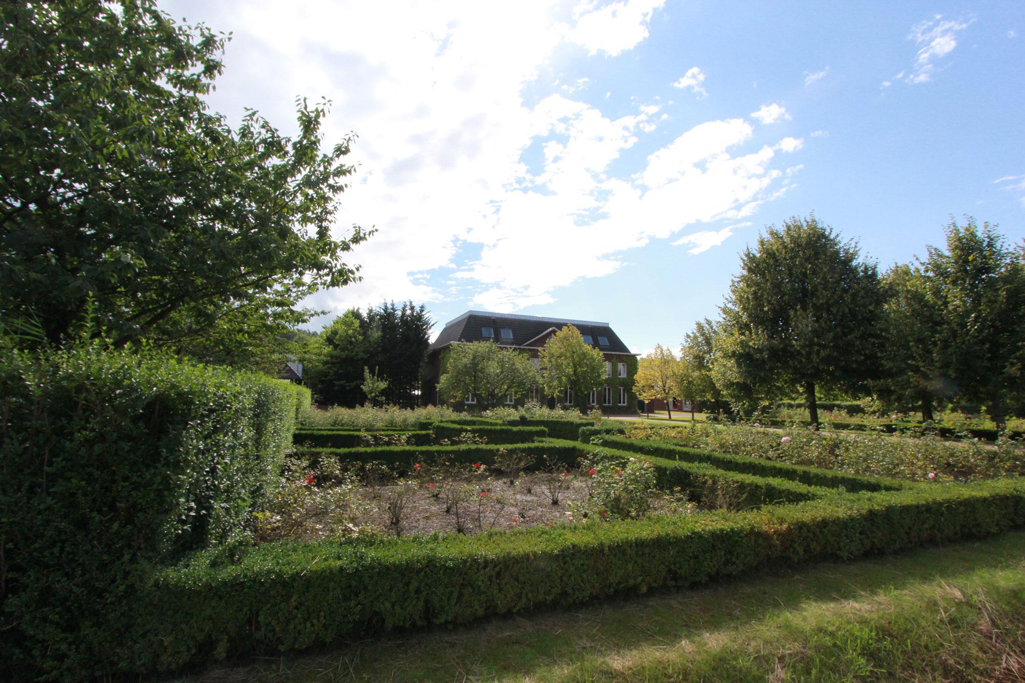 Groene-Velden-376