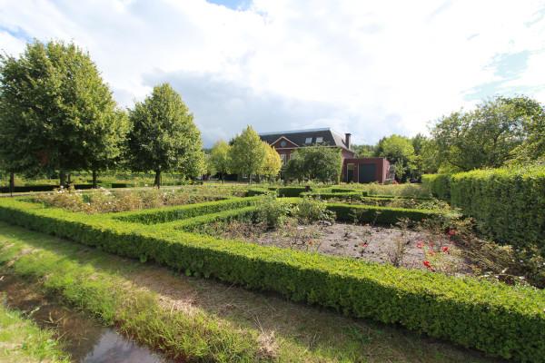 Groene-Velden-384