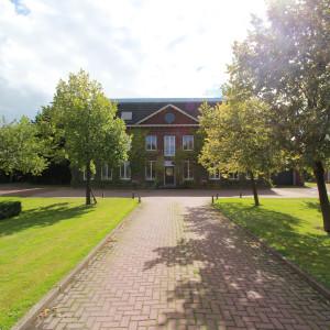Groene-Velden-386