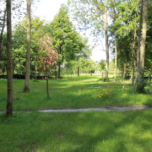 Groene-Velden-398